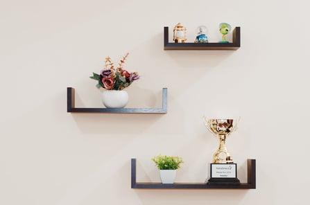 plant-prize-shelves-74942-1.jpeg